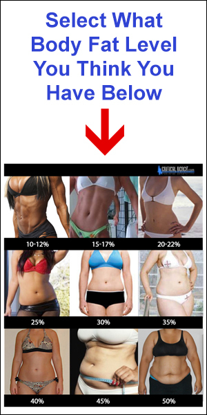 """Select your body fat level and link to the """"Metabolic Stretch"""" progam."""